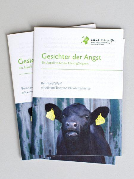 """Broschüre """"Gesichter der Angst"""" - DIN A6"""